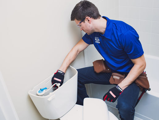 toilet, plumbing service, Westernish plumbing