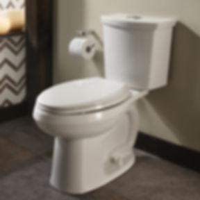 toilet, services, fixed price
