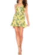 Show Me Your Mumu Piper Dress