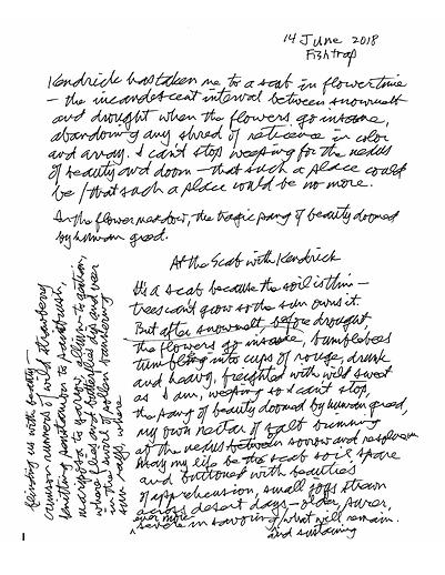 Draft of scab meadow poem.png