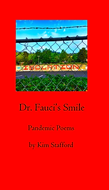 Dr. Fauci cover.png
