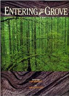 entering the grove.jpg