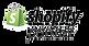 shopify-partner-logo-300x155 (2).png