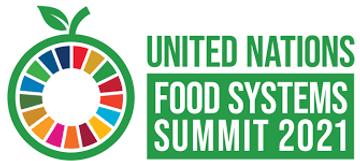 UNFSS logo.png