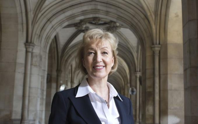 (This image is claimed as Fair dealing under Australian copyright law. Andrea Leadsom, the true leader of the leave campaign of Brexit ousted by more of the same.)
