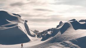 A Polar Explorer, a Field Marshall and a Career Consultant walk into a presentation...
