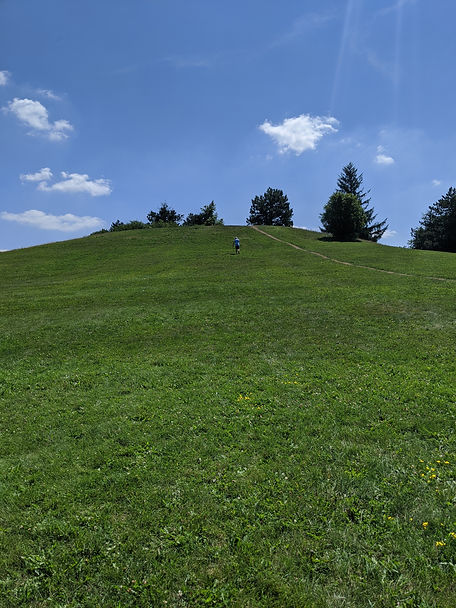 Mole Hill Runs in Guelph with Tri-City T