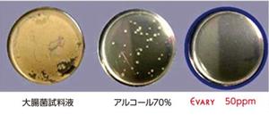 大腸菌試料液検査