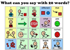 image o what can you say with 20 words
