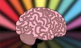 brain image2.jpg