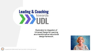 Overview of the UDL project