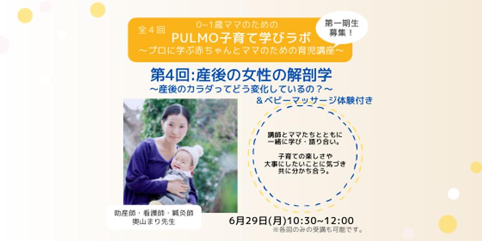 PULMO子育ての学びラボ〜プロに学ぶ赤ちゃんとママのための育児講座〜第4回産後の女性の解剖学