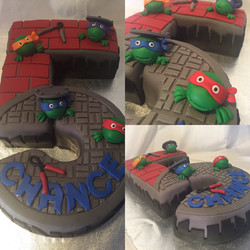 Turtles in a half shell