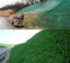 hydroseeding_p1.jpg