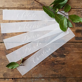 Vellum place sitting cards.jpg