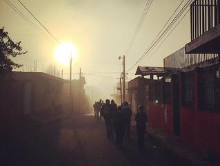 Walking in Misty Dawn!
