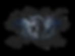 The Portal, Kinect SLS camera