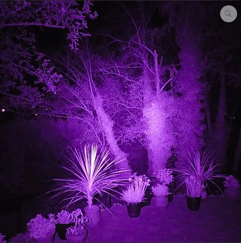 OUTDOORS w/IR Light