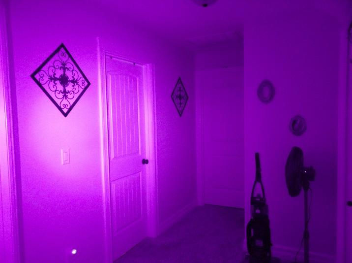 Dark with IR Light 1