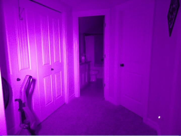 Dark with IR light 2