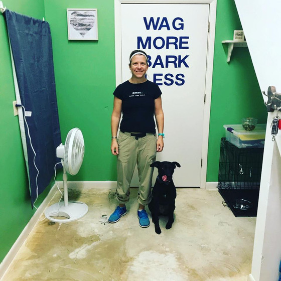 Paws on Learning Hosts Grand Opening