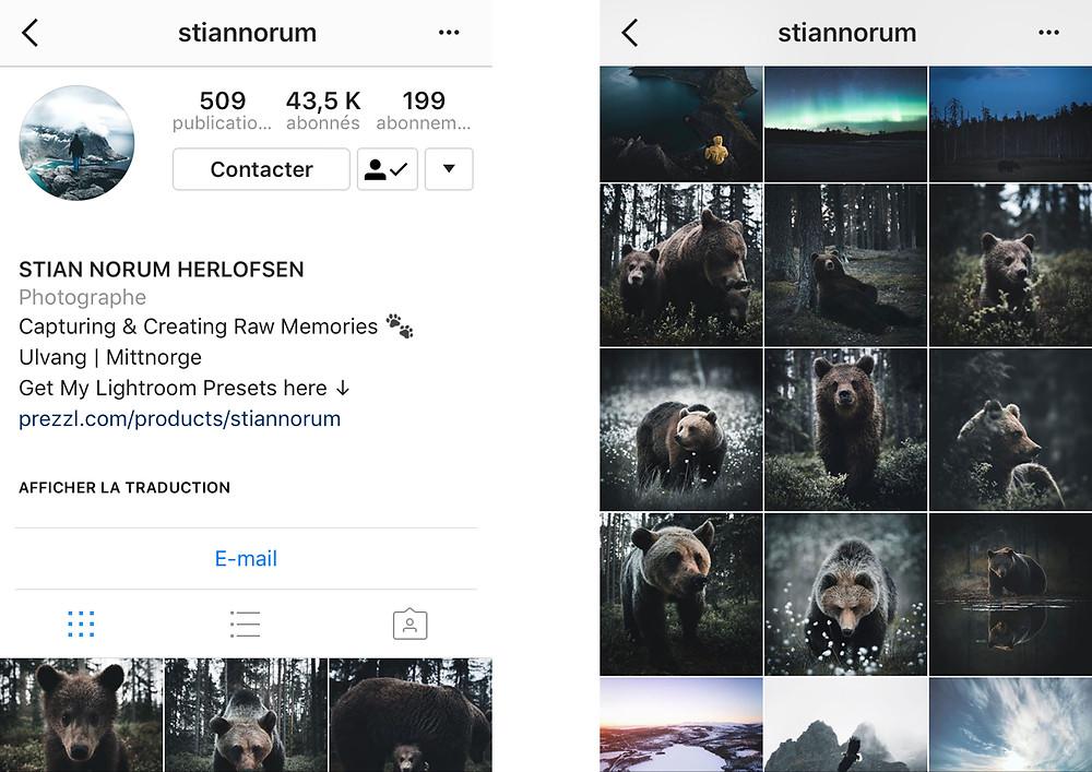 Stiannorum