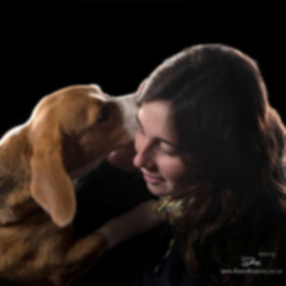 Amy Millward Dog Training, carmarthen dog trainer, qualified dog trainer, amy millward, Carmarthenshire dog trainer, best dog trainer in carmarthen