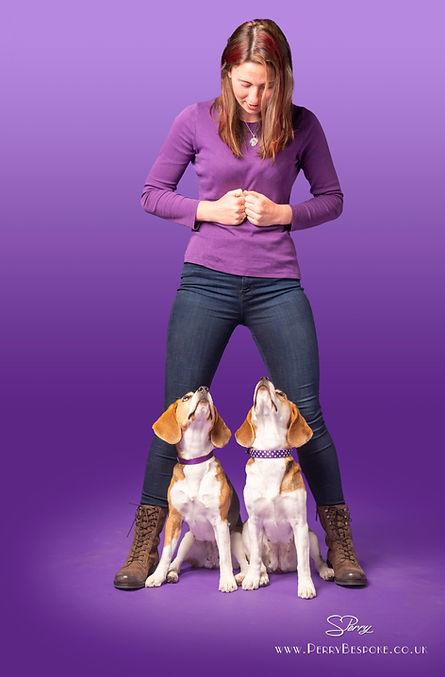 Amy Millward Dog Training - qualified dog trainer in carmarthen