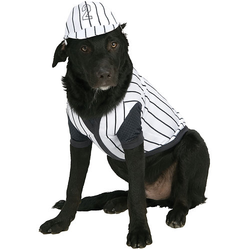Black Pinstripe Baseball Player Pet Costume