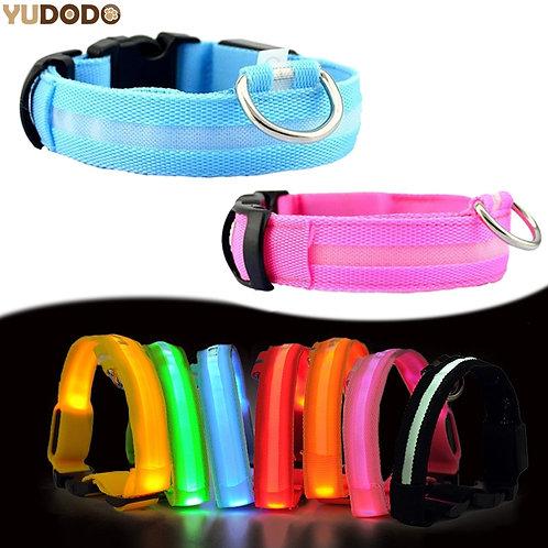 Dark Dog Leash,Dogs Luminous Fluorescent Collars Pet Supplies