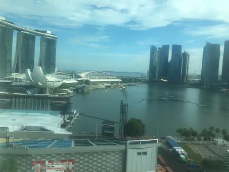 シンガポールPEP(個人事業ビザ)