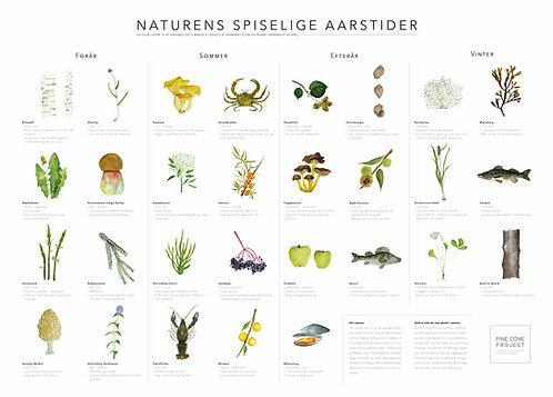 Naturens Spiselige Aarstider