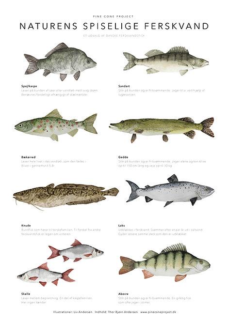 Naturens spiselige ferskvand