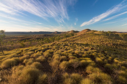 Hills of Spinifex