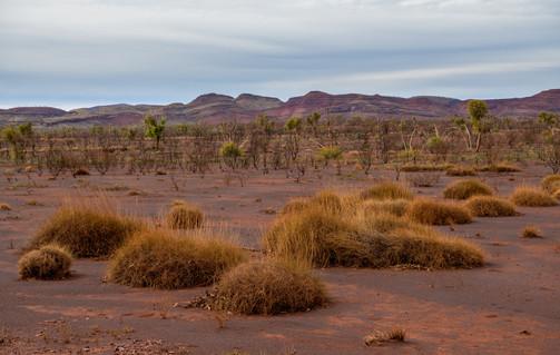 The Desert Land