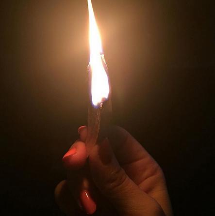 Palo fire
