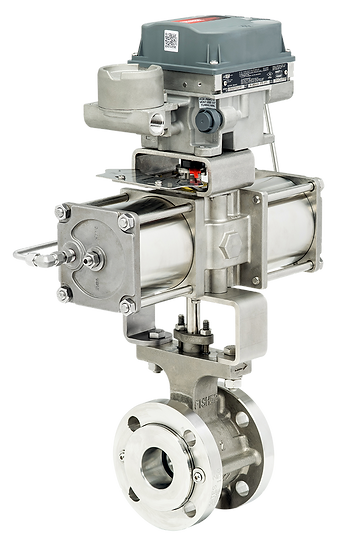 Stainless Steel Bettis RGS-Q series Actuator with DVC