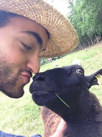 Bonde med lamm