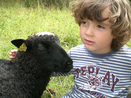 Boy_with_lamb.JPG