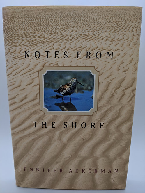 Notes from the Shore