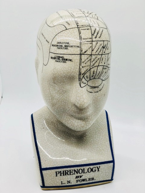 Fowler Phrenology Head (Ceramic Reproduction)
