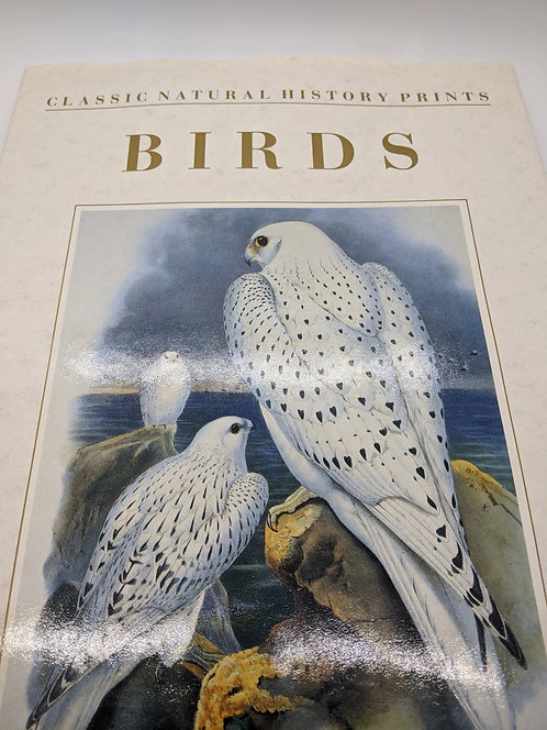 Birds: Classic Natural History Prints