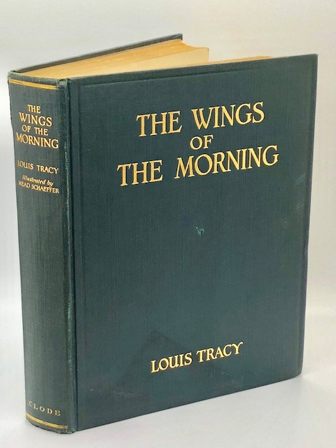 Wings of the Morning: A Tale of Shipwreck, Adventure, and Romance
