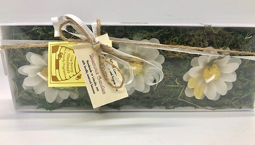 Floating Beeswax Daisy Candles: Box Set