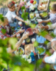 picnic banner resized.jpg