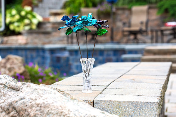 Blue, teal and purple roses by the pool