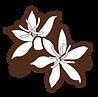 BonBeans_justflowers_edited.png