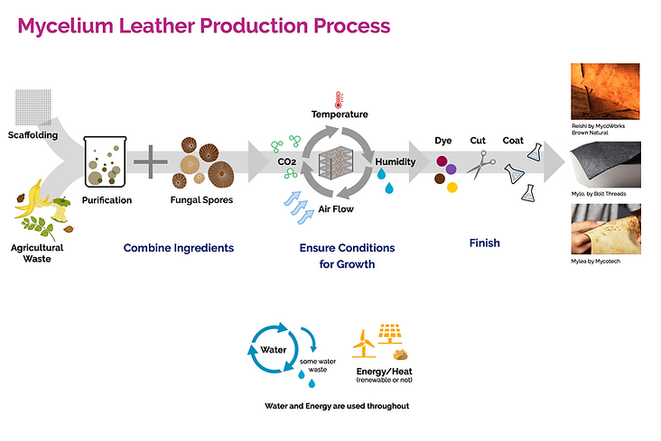 Mycelium Leather Production Process.png