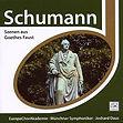 Schumann Faust.jpg