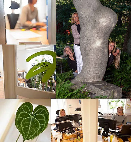 Alcea_Bokföring_Åkersberga_Norrtälje_Col